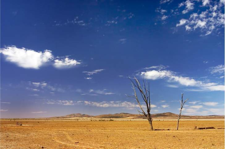 Round 4 of the Building Better Regions Fund now open - Drought-affected regions eligible